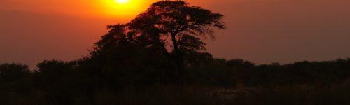 Mondial Movers verhuizen naar Afrika